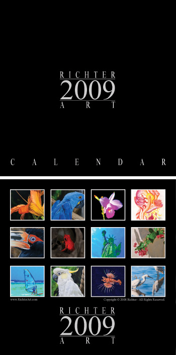 Richter Art Calendar 2009 cover